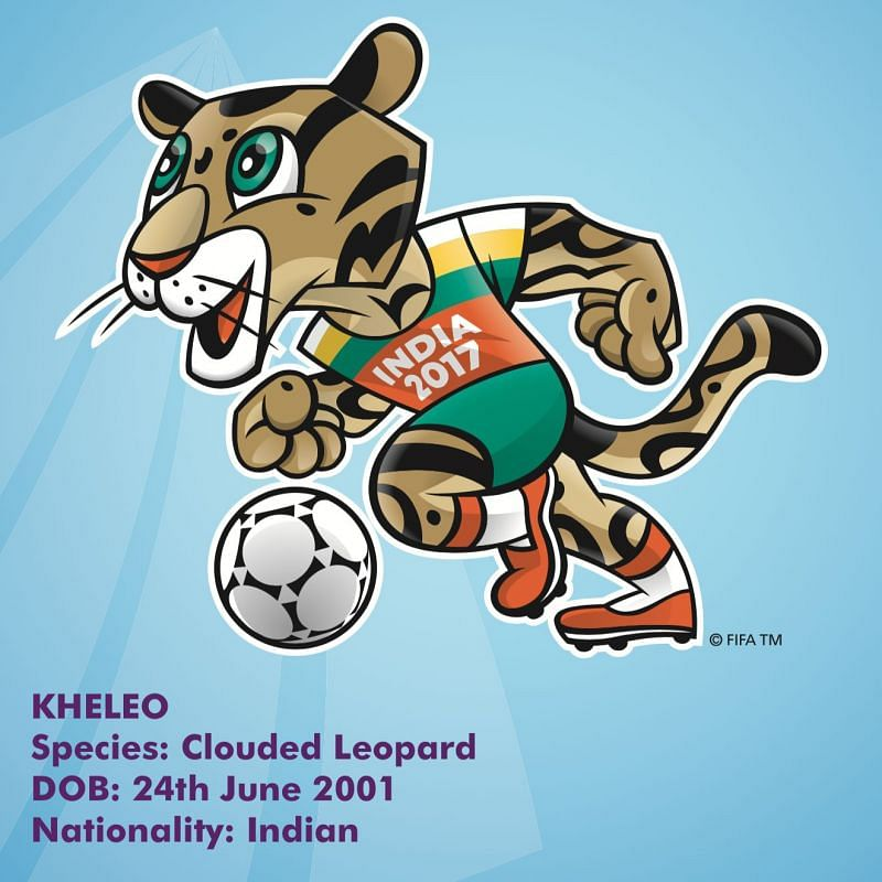 The clouded leopard - Kheleo (who wouldn