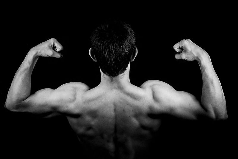 Shoulders and traps are the main muscles of the upper body.