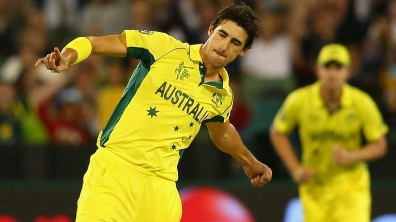 Starc was the leading wicket-taker in 2015 World Cup