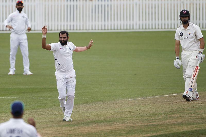 मोहम्मद शमी की शानदार गेंदबाजी