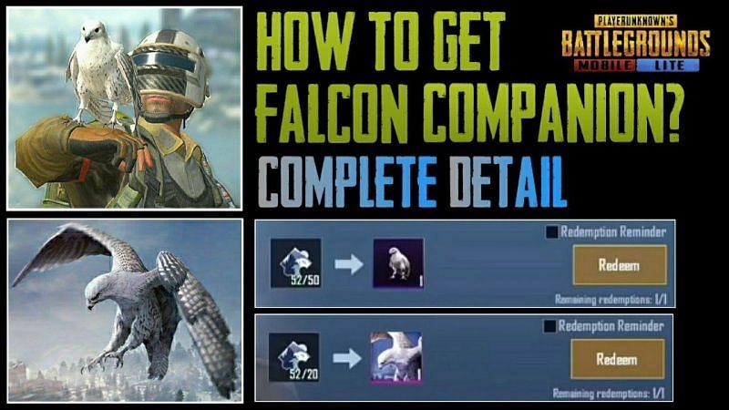 Get Falcon Companion in PUBG Mobile Lite (Credits: BEAST么ÁLPHÀ)