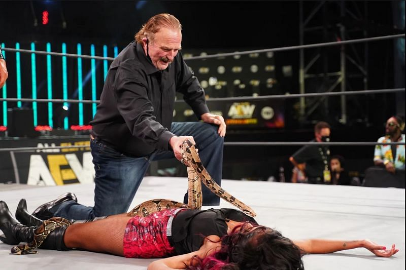 Jake Roberts drapes a snake over Brandi Rhodes