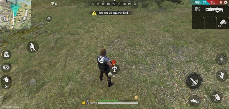 EP Mushrooms in Free Fire