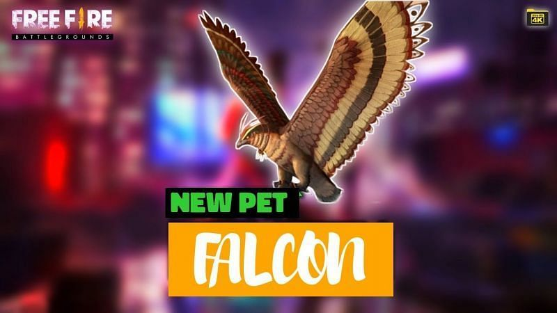 A look at Falcon, a new pet in Free Fire
