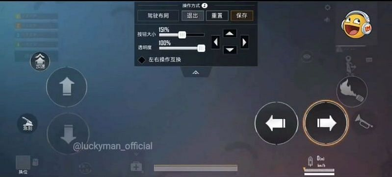 Control Customization (Picture Courtesy: LuckyMan/YT)