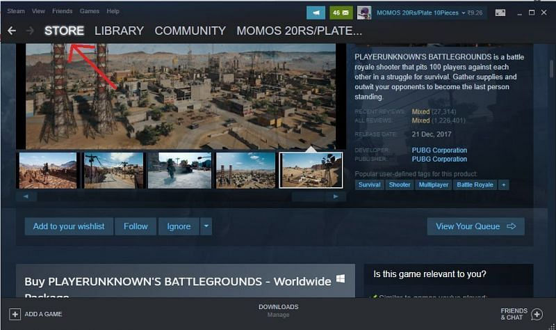 Steam store section