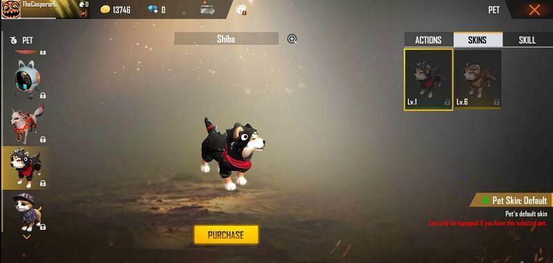 Shiba Pet in Free Fire