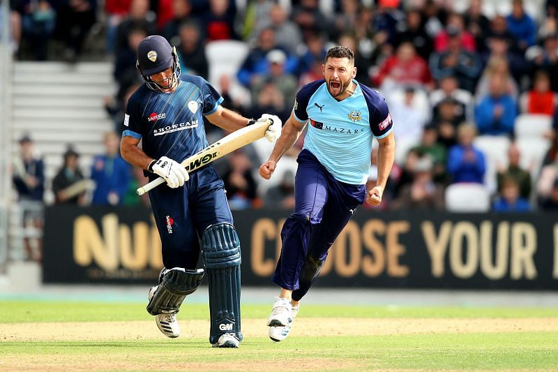 Former England all-rounder Tim Bresnan celebrates taking a wicket.