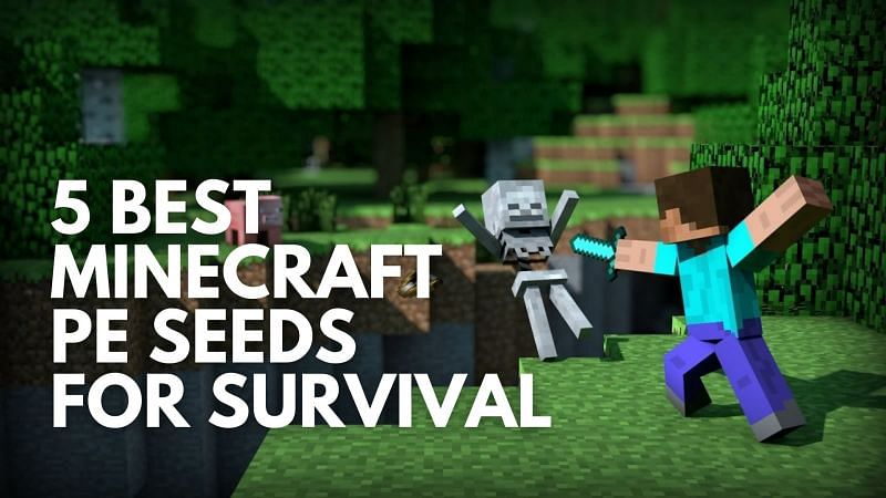 Five best Minecraft PE seeds for survival