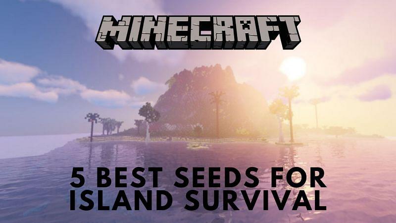 5 best Minecraft seeds for island survival