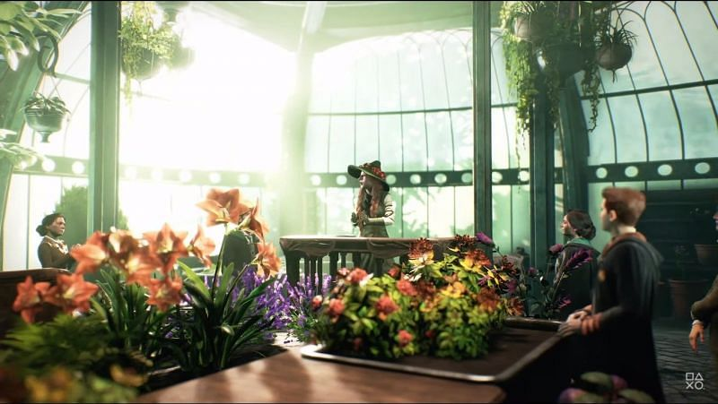 Herbology classes in Hogwarts in