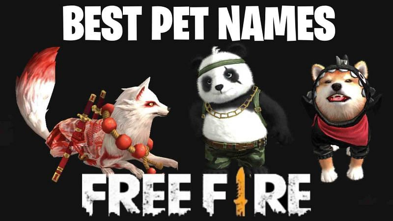 Many Free Fire users want unique names for their pets so that they can stand outin the game