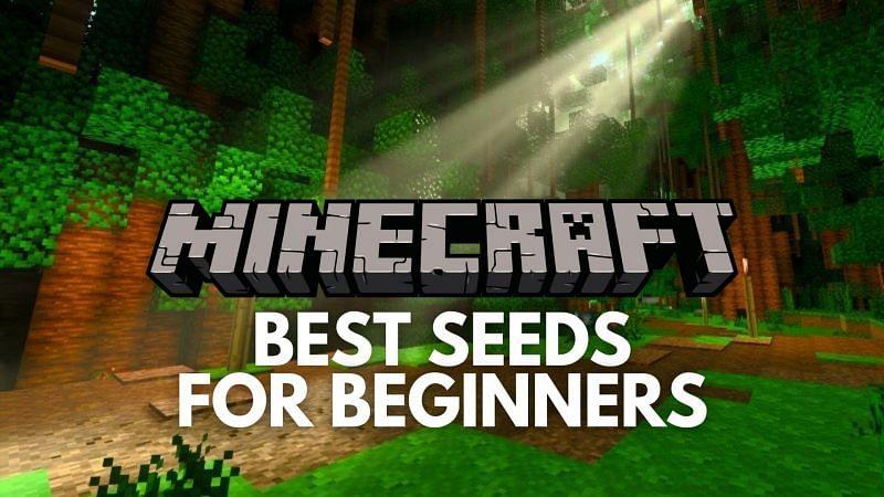 Best Minecraft seeds for beginners
