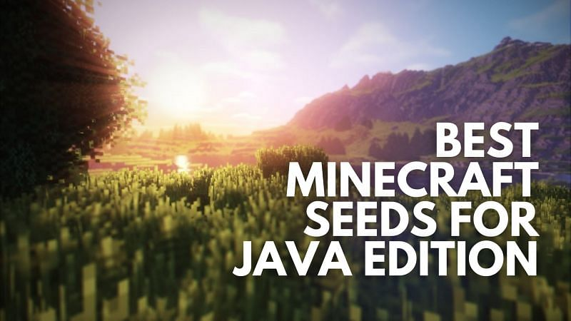 Best Minecraft seeds for Java Edition