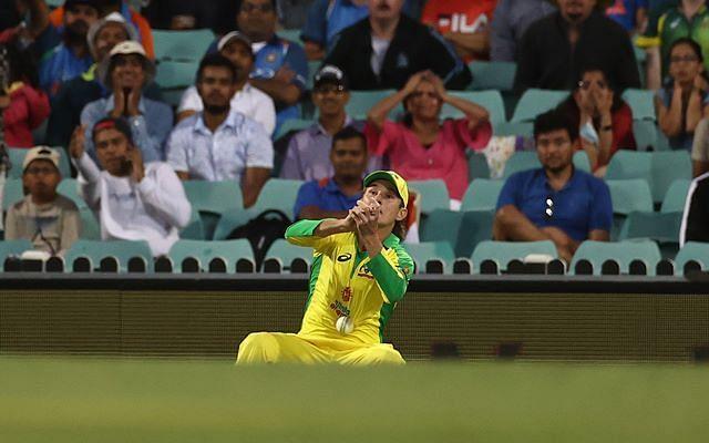 Adam Zampa dropped Virat Kohli on 1 in the first ODI