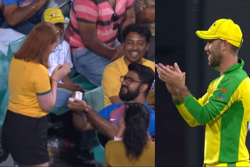 IND v AUS 2020: Marriage proposal in the SCG crowd during the match wins  hearts [Watch]