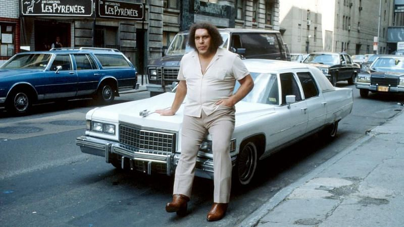 Andre the Giant worked for WWE from 1973 to 1991