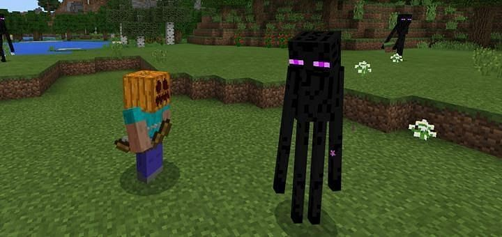 Standing in a pool of water can protect you from the Enderman