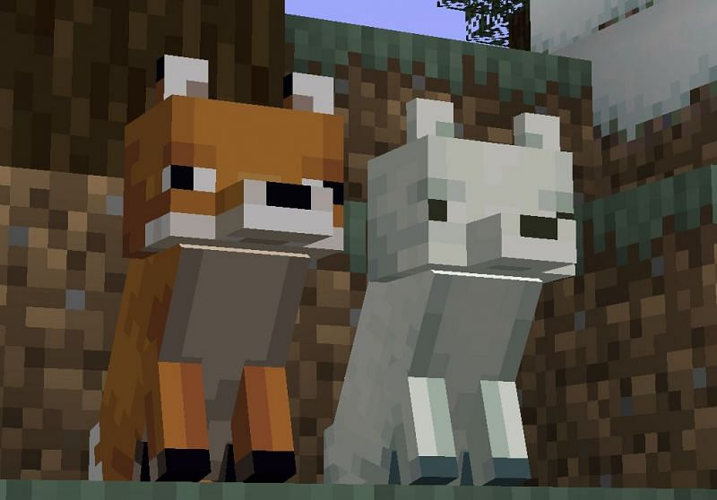 Foxes by default will run away from the player so be sure to sneak up on them slowly