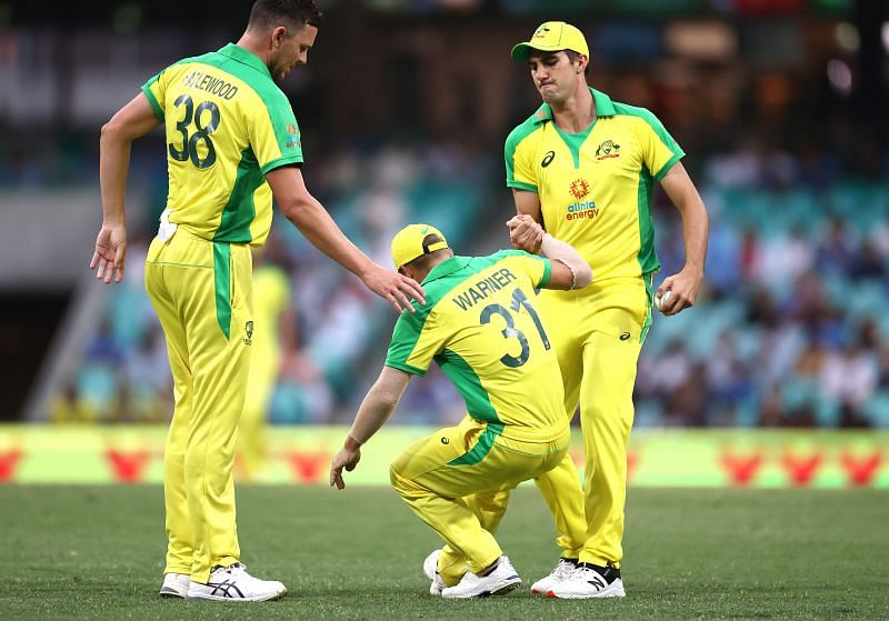 David Warner injured his groin in the second ODI against India.