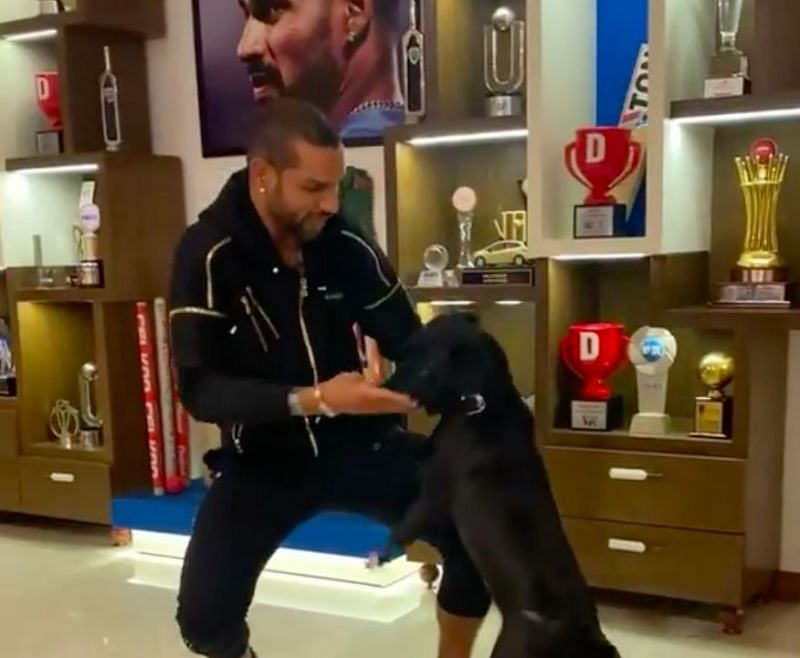 Shikhar Dhawan took to Instagram to share a hilarious dance video with his pet dogs.
