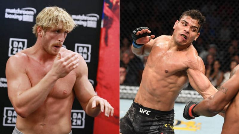 YouTuber Logan Paul got knocked out by UFC middleweight Paulo Costa in a sparring session