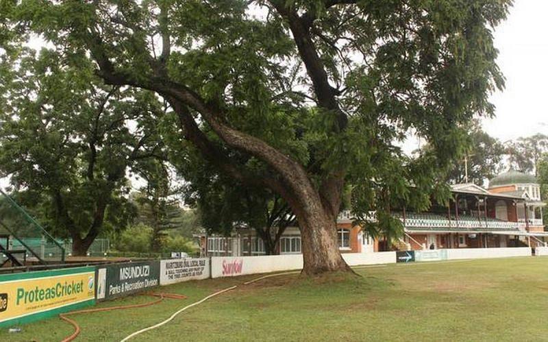 A cricket stadium in Pietermaritzburg, South Africa has a tree inside the ground (P/C: The Hindu)