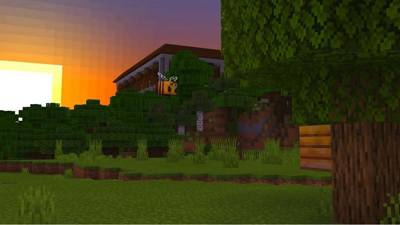 A picturesque view of a woodland mansion in Minecraft during a sunrise. (Image via Minecraft & Chill/YouTube)