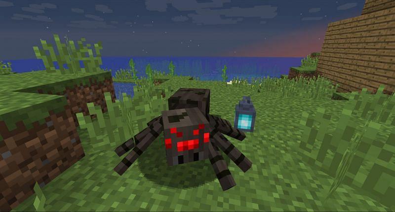 Spider mobs in Minecraft