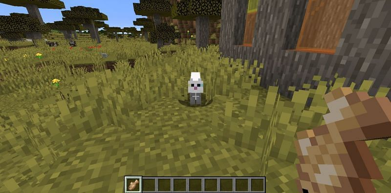 Approaching a stray cat with a piece of fish in Minecraft. (Image via Minecraft)