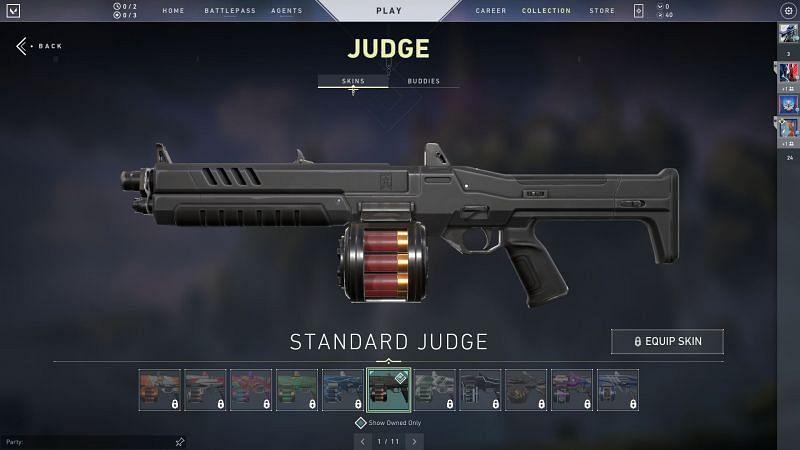 Judge Screengrab via Valorant Store