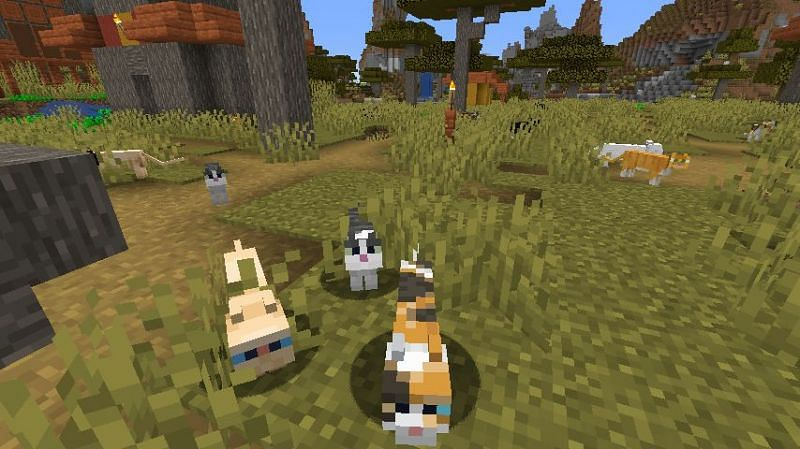 A large collection of stray cats in Minecraft. (Image via Minecraft)