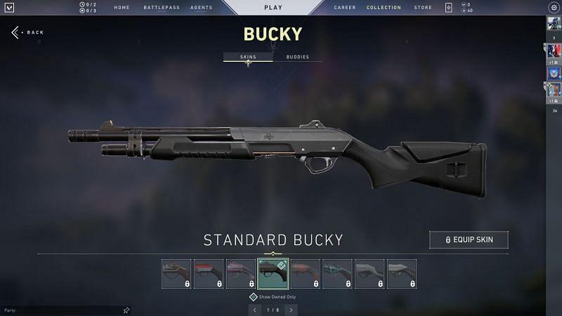 Bucky Screengrab via Valorant Store