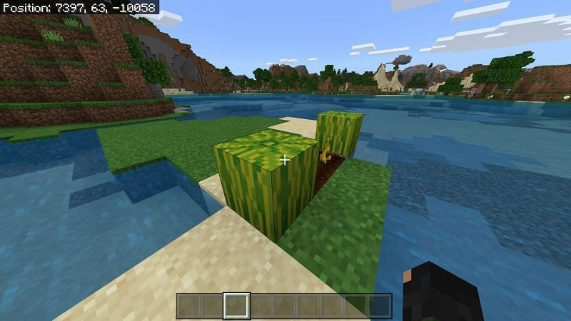 Melon in Minecraft