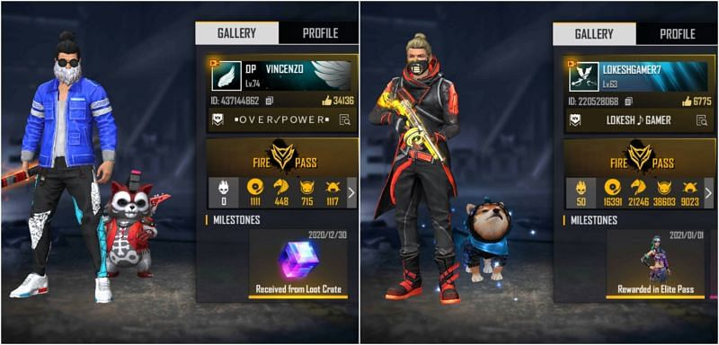 Their Free Fire IDs