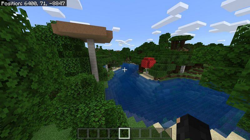 Dark oak biome in Minecraft