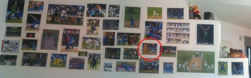 Wall leaking Cricket!