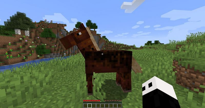A horse in Minecraft