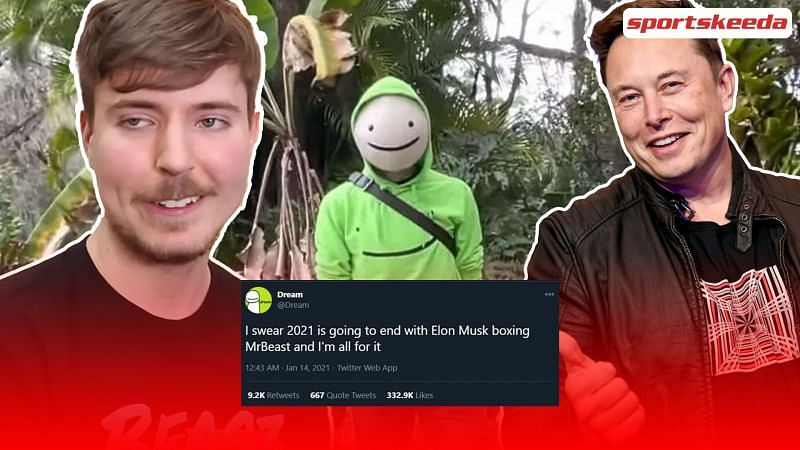 Dream suggested that MrBeast and Elon Musk will end up boxing in 2021.