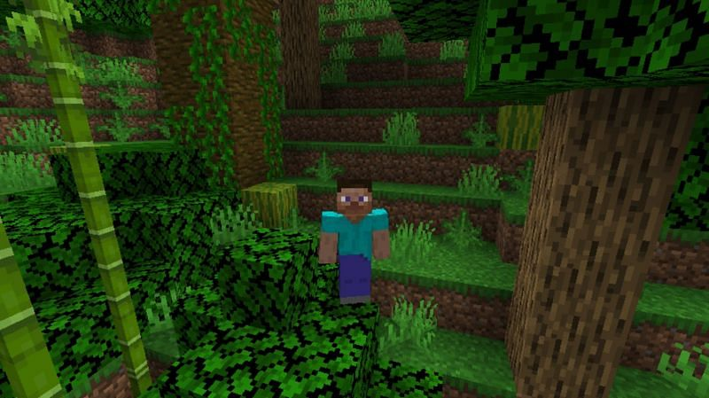 Melons can grow naturally in a jungle biome in Minecraft (Image via Minecraft)