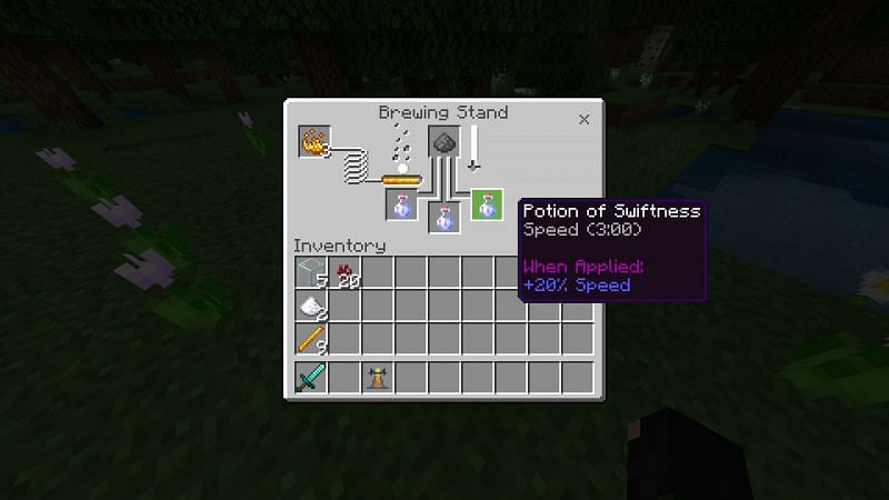 Using potion of Swiftness