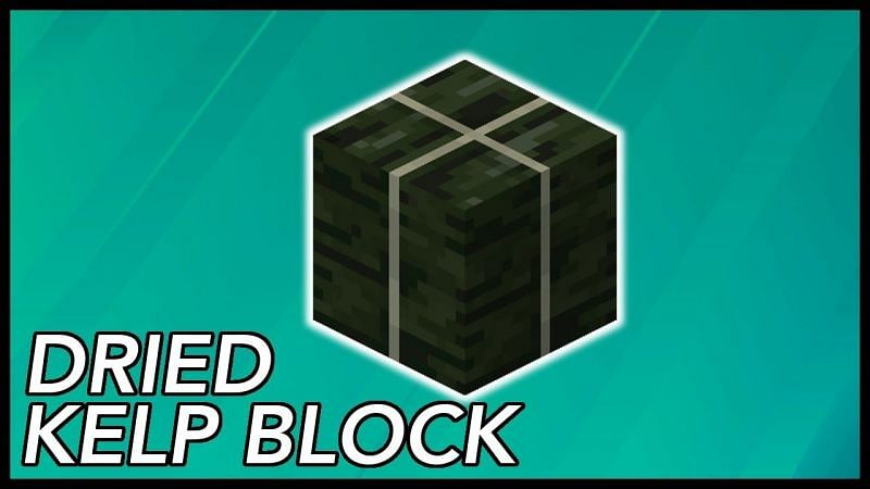 A dried kelp block in Minecraft. (Image via RajCraft/YouTube)
