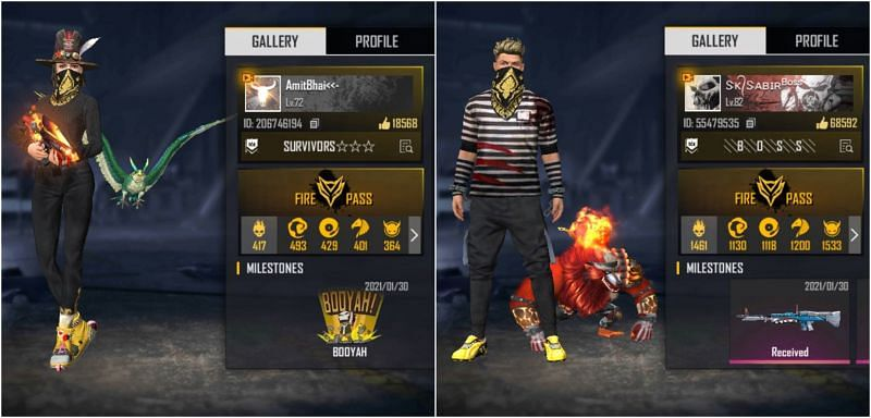 Free Fire IDs of both YouTubers