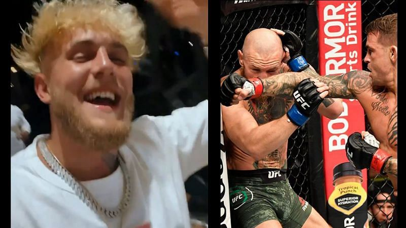 Jake Paul taunts Conor McGregor after his loss at UFC 257