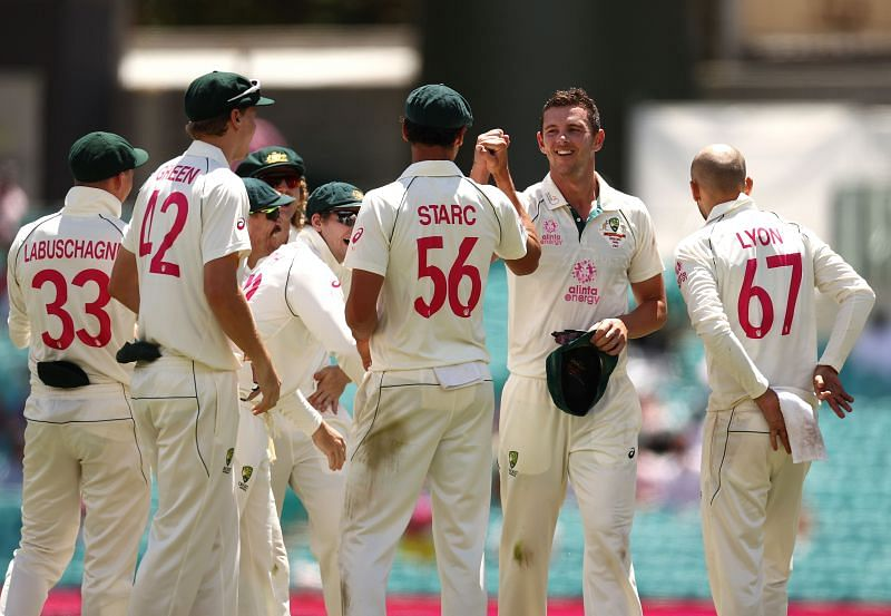 Australian players celebrate the fall of a wicket