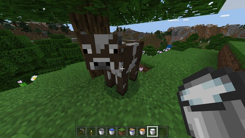 using a bucket to milk a cow in minecraft