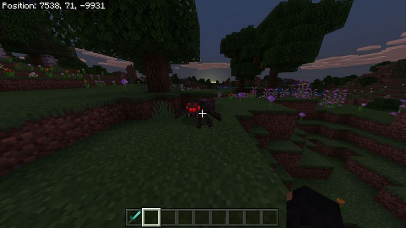 Spiders in Minecraft