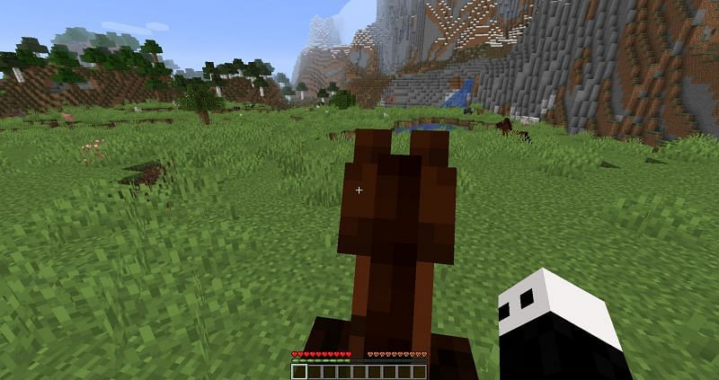 Taming a horse in Minecraft : Image 2