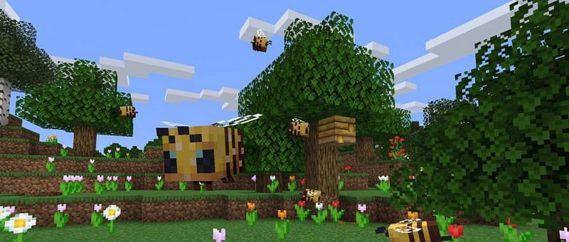 Image via minecraft.net