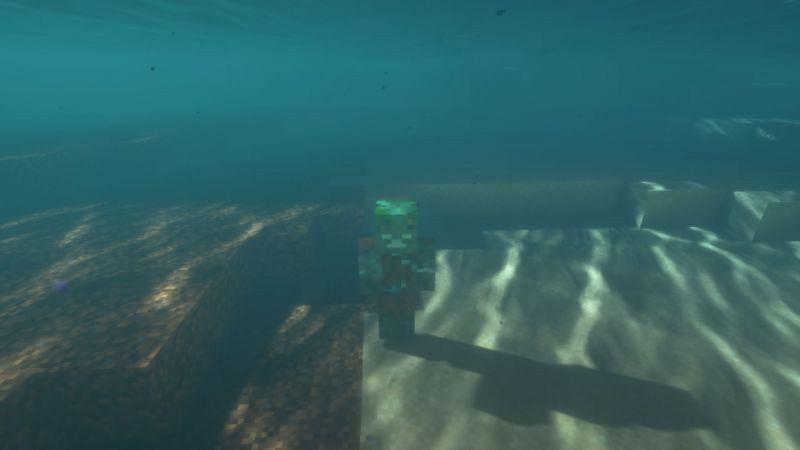 I need..... a taylor.... (Image via Minecraft)